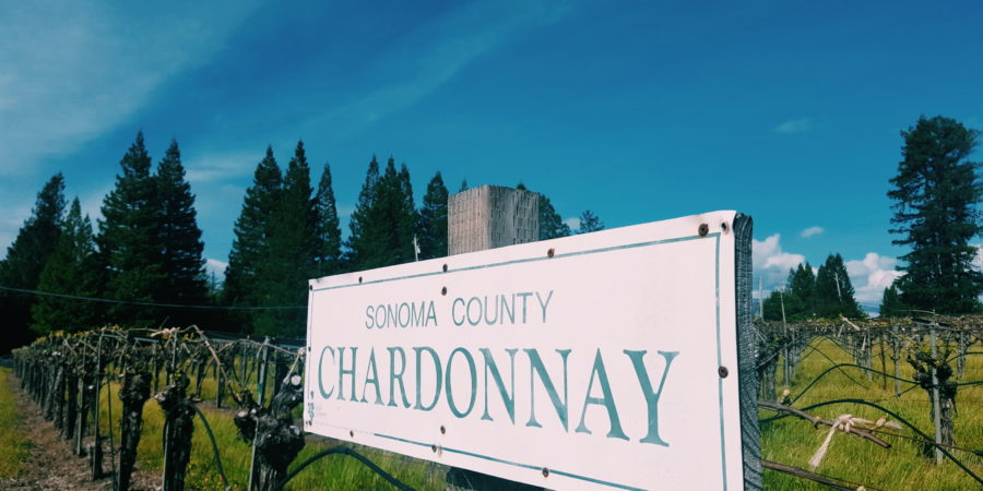 Wine Tasting In Sonoma County Brown Lady Travels